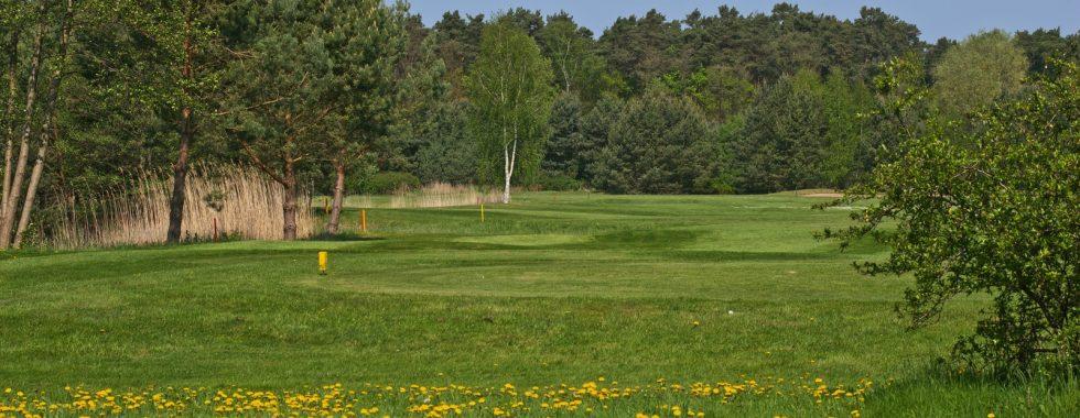 Golf-Angebot