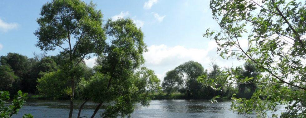 Natur Brandenburg Wasser
